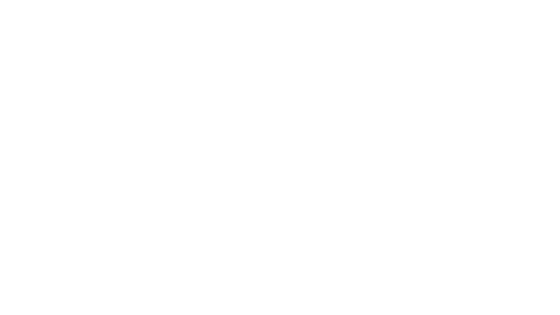 REI Advantage Logo